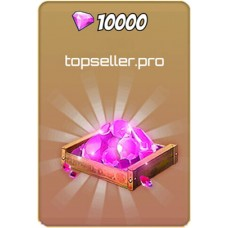 10000 Самоцветов HSW